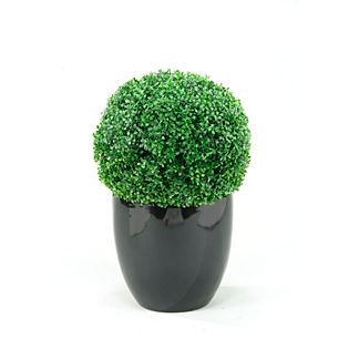 Outdoor Boxwood Ball in Resin Planter