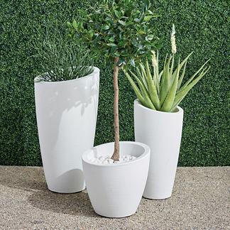 San Miren Planter