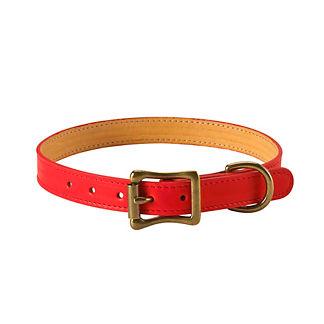 Italian Leather Dog Collar