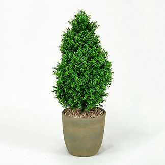 Pear Shaped Outdoor Topiary
