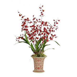 Dancing Oncidium in Ceramic Vase