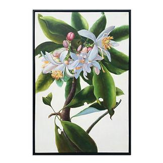 Sorrento Lemon Branch Painting