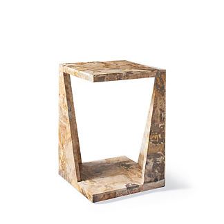 Attrayant Petrified Wood Side Table