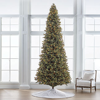 Noble Fir 12' Slim Profile Tree