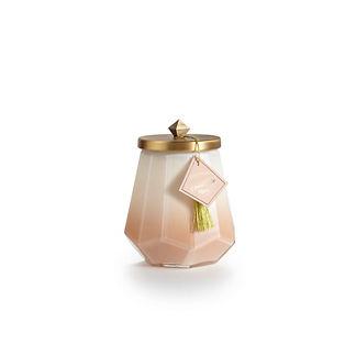 Illume Go Be Lovely Coconut Milk Mango Laurel Candle