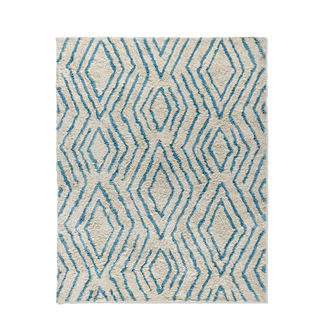 Dylan Shag Indoor/Outdoor Rug