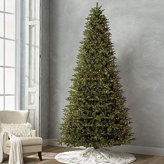 Grand Fraser 12' Slim Profile Tree