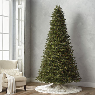 Grand Fraser 10' Slim Profile Tree