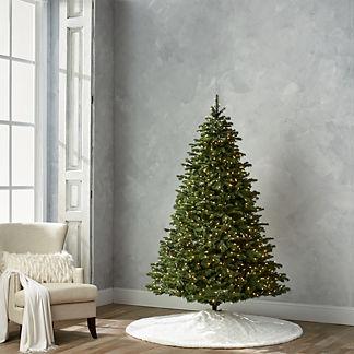 Grand Noble 7-1/2' Full Profile Tree