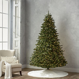 Grand Noble 9' Full Profile Tree