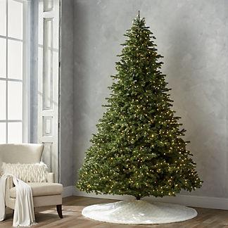 Grand Noble 10' Full Profile Tree