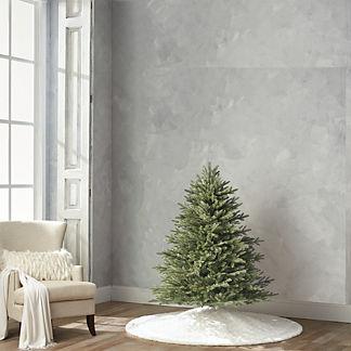 Grand Fraser 4-1/2' Full Profile Tree