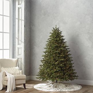 Grand Fraser 7-1/2' Full Profile Tree