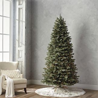 Grand Blue Spruce 9' Slim Profile Tree