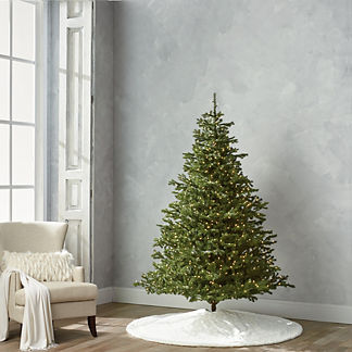 Balsam Fir 7-1/2' Full Profile Tree with Stand