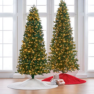 Noble Fir Slim Profile Tree