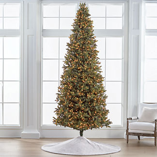Noble Fir 10' Slim Profile Tree