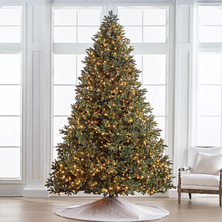 Noble Fir 10' Full Profile Tree