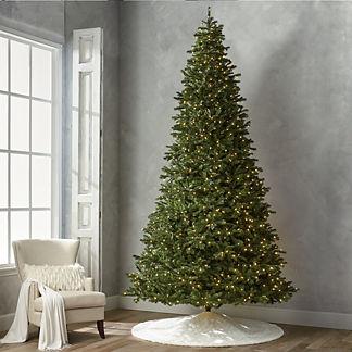 Grand Noble 12' Slim Profile Tree