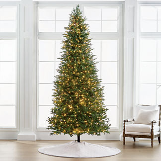 Fraser 10' Slim Profile Tree