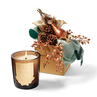 Lux Aspen Holiday-scent