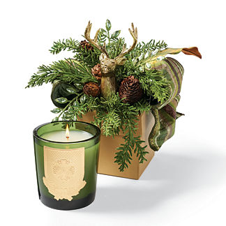 Lux Noble Fir Scented Holiday Candle in Gift Box
