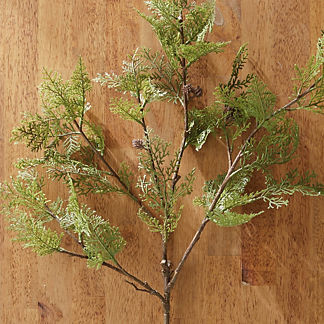 Pine Sprays with Small Pinecones, Set of Four