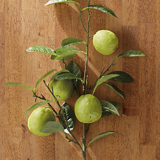 Faux Guava Stems, Set of Four