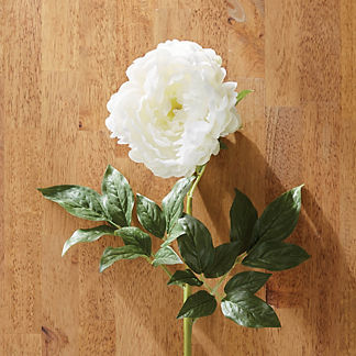 Faux White Peony Stems, Set of Six