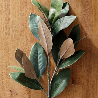 Faux Magnolia Leaf Stems, Set of Four