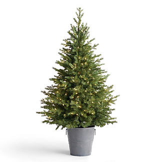 Decorative 5 ft. Tree in Metal Pot