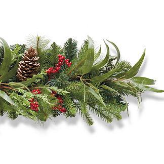 Holiday Highland 6' Garland