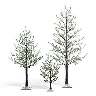 Snow Pine Tree