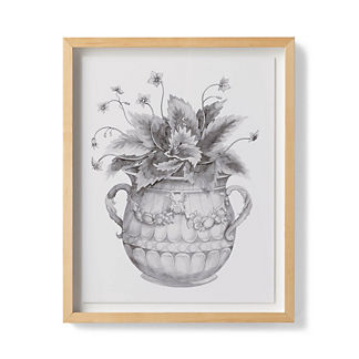 Watercolor Aloe Giclee Print VI from the New York Botanical Garden Archives