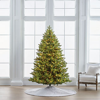 Balsam Fir 7-1/2' Full Profile Tree