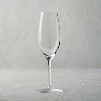 Giulia 8 oz. Champagne Glasses, Set of Six