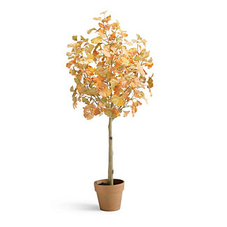 Gingko Leaf Potted Plant