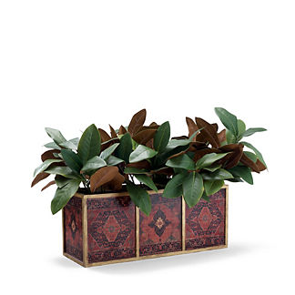 Magnolia Leaf in Wooden Box