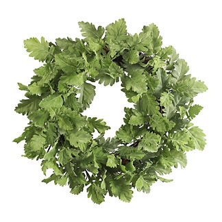 Dusty Miller Leaves Wreath