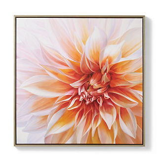 Dahlia Oil on Canvas