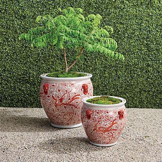 Coral Dot Ceramic Planter