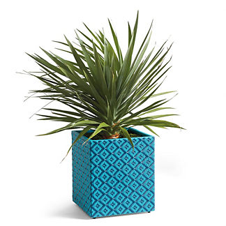 Belen Wicker Planter