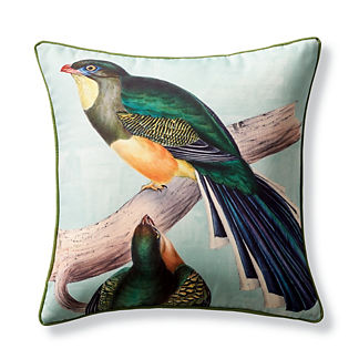 New York Botanical Garden Trogon Indoor/Outdoor Pillow