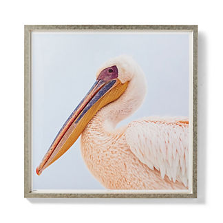 Isle of Palms Pelican Giclee Print