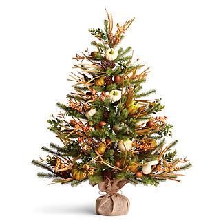 Harvest Pine 36