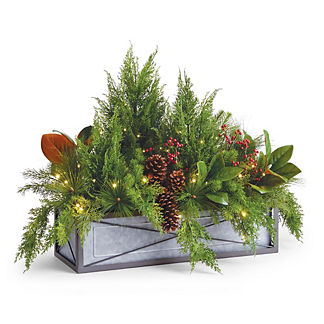 Holiday Tidings Outdoor Cordless Window Box