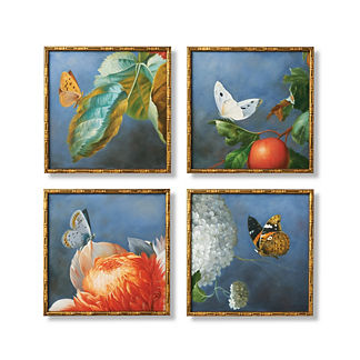 Olana Handpainted Butterfly Wall Art, Set of Four