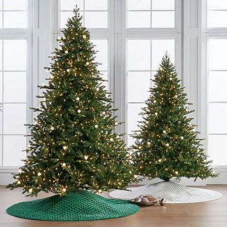 Telluride Fir Full Profile Tree
