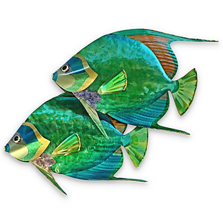 Fiji Angelfish Pair Wall Art