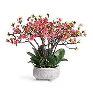 Blossom Stem Arrangement